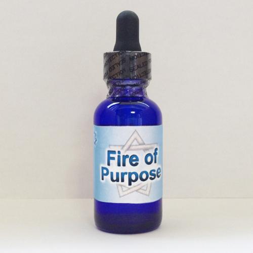 画像1: Fire of Purpose ファイア・オブ・パーパス(目的の炎) (1)