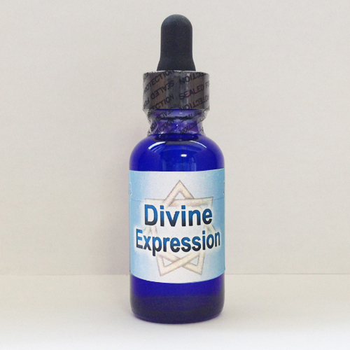 画像1: Divine Expression ディヴァイン・エクスプレッション(聖なる表現 ) (1)